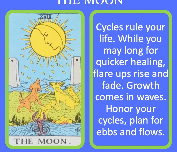 The 19th RWS Major Arcana Tarot Card shows two animals howling at the Moon and indicates the cycles of life.