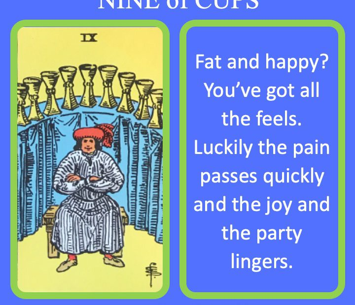 The RWS Minor Arcana Tarot Card, the 9 of Cups, shows a satisfied adult before their many cups indicating emotional maturity and resilience.
