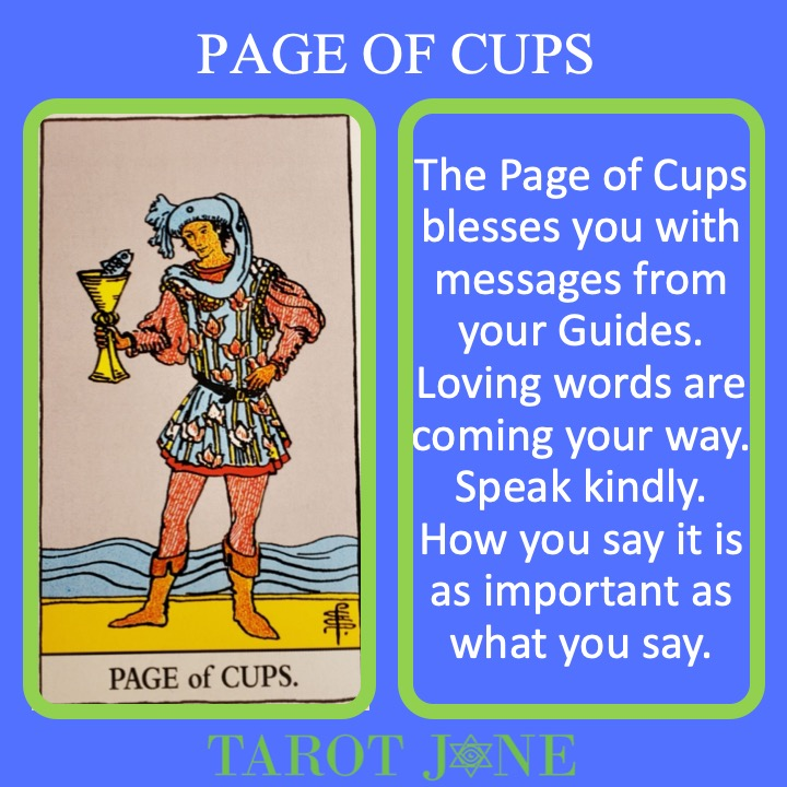 The RWS Court Card, Page of Cups, shows a young person holding a chalice with a fish inside indicating intuitive and emotional messages possibly from Spirit.