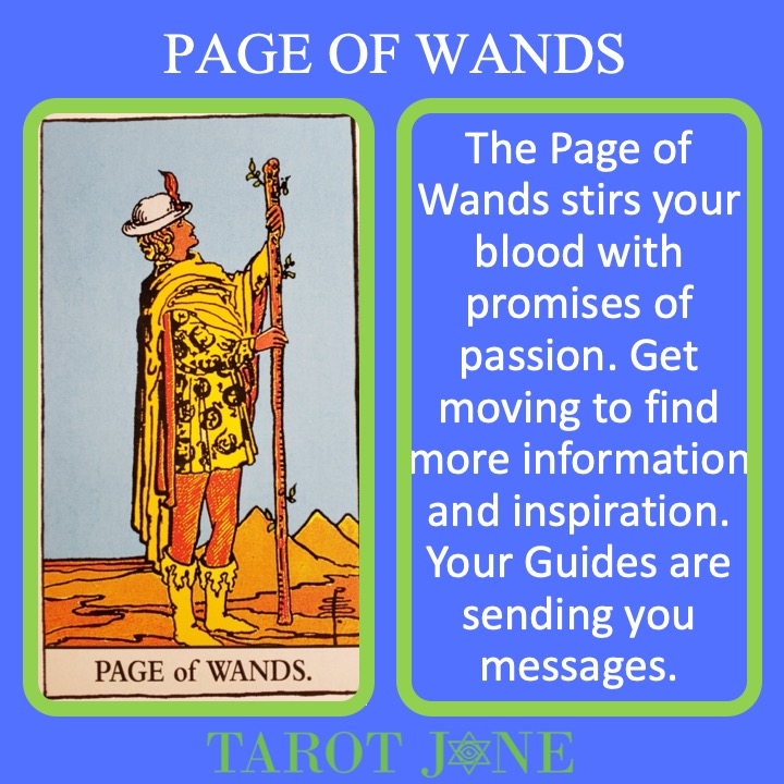The RWS Court Card, the Page of Wands, shows a youth holding a living walking staff indicating the messages are on their way especially regarding passion projects.